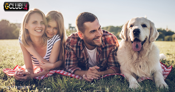 จะรู้ได้อย่างไรว่าคุณพร้อมที่จะรับเลี้ยงสุนัขแล้ว