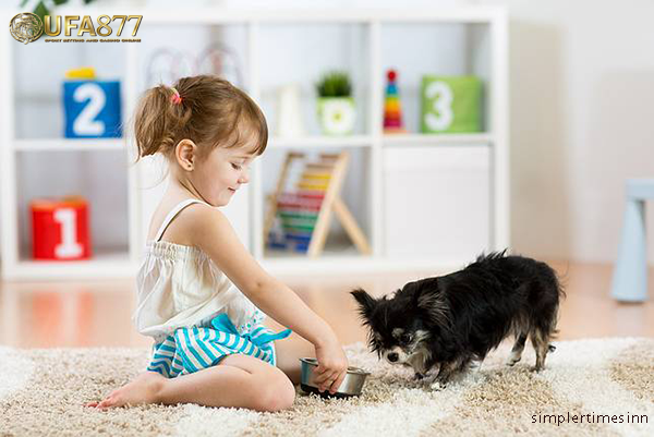 การเลือกการเลือกสัตว์เลี้ยงที่ดีที่สุดสำหรับเด็ก